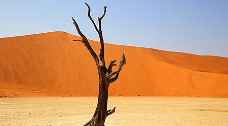 Sossusvlei - Namibias ørkenlandskap